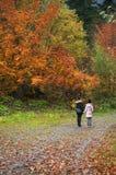 Moeder en dochter in de herfstbos Royalty-vrije Stock Foto