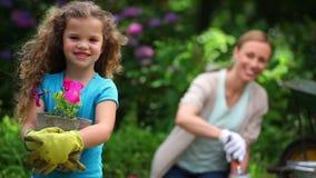 Moeder en dochter die bloemen planten stock footage
