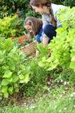 Moeder en dochter die samen tuinieren royalty-vrije stock fotografie