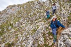 Moeder en jonge geitjes bij bergtrek royalty-vrije stock afbeeldingen