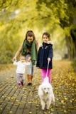 Moeder en twee meisjes die met een hond in het de herfstpark lopen royalty-vrije stock foto