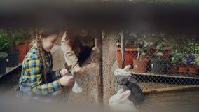 Moeder en weinig dochter de landbouwers voeden konijn in kooi, eten het letten van op hen en het lachen Gelukkige huisdieren, stock videobeelden