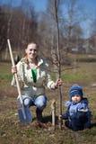 Moeder en zoon die boom planten Royalty-vrije Stock Fotografie