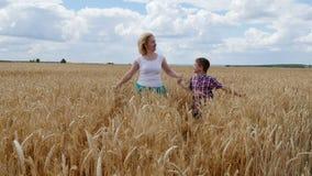 Moeder en zoon die op het tarwegebied lopen Een gelukkige familie stock footage