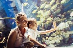 Moeder en zoons het letten op het overzeese leven in oceanarium royalty-vrije stock foto's