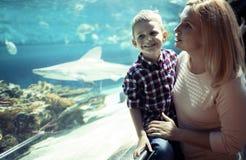 Moeder en zoons het letten op het overzeese leven in oceanarium stock afbeelding
