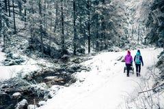 Moeder met babywandelwagen die van moederschap in de winterbos genieten stock fotografie