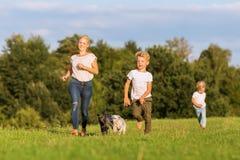 Moeder met twee jongens en twee hondenlooppas over een weide Stock Afbeelding