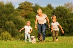 Moeder met twee jongens en twee hondenlooppas over een weide Royalty-vrije Stock Foto
