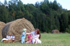 Moeder met tweelingen op gebied Royalty-vrije Stock Afbeeldingen