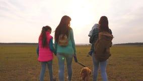 Moeder, weinig kind en dochters en huisdierentoeristen familiereizen met de hond op de vlakte groepswerk van hecht stock footage