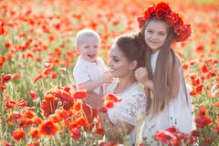 Moeder, zoon en dochter op een gebied van rode papavers stock afbeeldingen