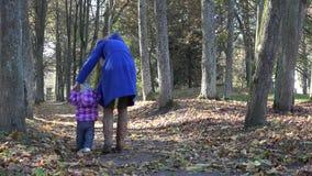 Moedergang met weinig baby in de herfstpark met droge bladeren 4K stock videobeelden