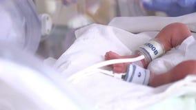 Moederschapscentrum Streng zieke pasgeboren in incubator, intensieve het ziekenhuistherapie: CCU, ICU, ITU Het uiterst kleine bab stock video