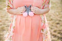 Moederschapsportret Stock Foto's