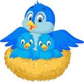 Moedervogel met haar twee babys in het nest Royalty-vrije Stock Foto
