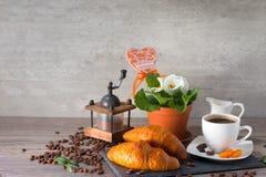 Moedor de café, dois croissant amanteigados, grãos de café do aroma e flores da prímula no fundo escuro Fotos de Stock Royalty Free