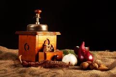 Moedor do vintage com especiarias fotografia de stock