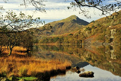 Moel Hebog from Llyn Gynant shore stock images