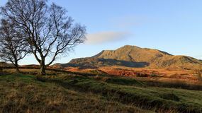 Moel Siabod. A view of Moel Siabod from above Capel Curig Stock Image