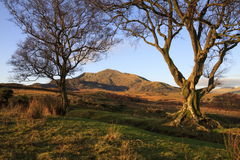Moel Siabod Royalty Free Stock Photo