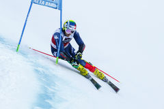 MOELGG Manfred in Audi Fis Alpine Skiing World-Schale Men's-Riesen stockbild