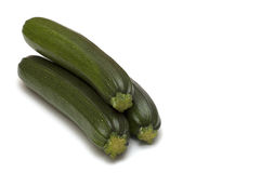 Moelle /courgette Image stock