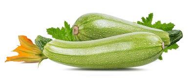 Moelle /courgette de légume frais d'isolement sur le blanc Image stock