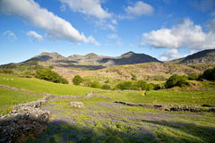 Moelwyn range Royalty Free Stock Photography