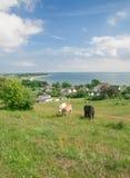 Moenchgut,Ruegen Island,baltic Sea,Germany Stock Images