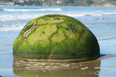 moeraki νέα ειρηνική Ζηλανδία ακτών λίθων Στοκ Εικόνες