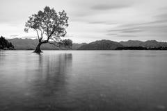 Moeraki Boulder, Nuova Zelanda immagini stock libere da diritti