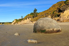 Moeraki boulders Stock Images