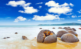 Free Moeraki Boulders Royalty Free Stock Photos - 24931978