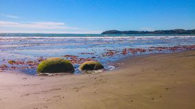 Sunny Beach in New Zealand stock photography