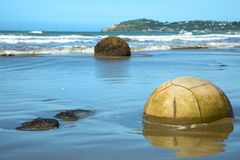 Moeraki boulders beach in New Zealand. Spheric Moeraki boulders at Koekohe beach in South Island, New Zealand Royalty Free Stock Image