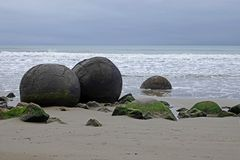 Moeraki Boulders on Koehohe beach in New Zealand. Round highly spherical boulders on the shores of the Tasman sea in the South island of New Zealand. They can be royalty free stock photography