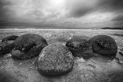 Moeraki boulders Royalty Free Stock Photography