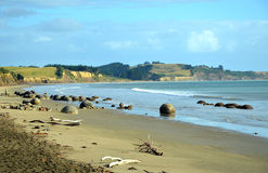 Moeraki Boulders, Koekohe Beach, New Zealand Stock Photography
