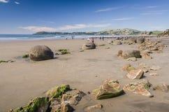 Moeraki boulders, natural wonder in New Zealand Stock Image