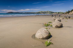 Moeraki boulders, natural wonder in New Zealand Royalty Free Stock Photos