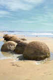 Moeraki Boulders, New Zealand Royalty Free Stock Images