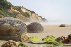 Moeraki Boulders, New Zealand Royalty Free Stock Photo