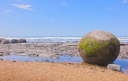 Moeraki boulders on New Zealand beach Royalty Free Stock Photo