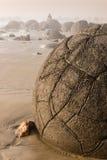Moeraki boulders on New Zealand coast Royalty Free Stock Images