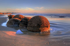 Moeraki Boulders. New Zealand, South Island, east coast, during the sunset Royalty Free Stock Photos