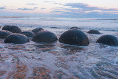 Moeraki boulders in New Zealand. Moeraki boulders at the sunset in New Zealand. Volcanic landscape on the coast line with water and ocean in the background Royalty Free Stock Photo