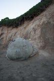 Moeraki boulders in New Zealand Royalty Free Stock Image