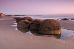 Moeraki Boulders at pink sunrise Royalty Free Stock Images