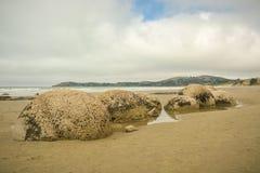 Moeraki Boulders, popular tourist attraction on Koekohe beach near Moearki in New Zealand. Moeraki Boulders, popular tourist attraction on Koekohe beach near stock image